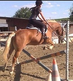 Avatar de Vrea.cheval