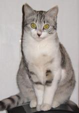 Avatar de cat58