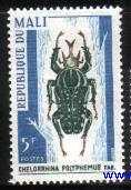 Timbre: Chelorrhina polyphemus