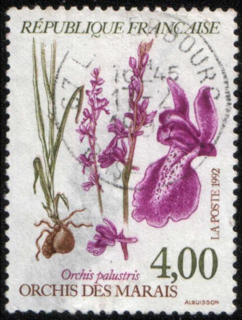 timbre: Orchis des marais DÉCOTÉ