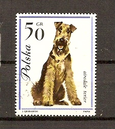 Timbre: Airedale terier
