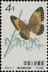 timbre: Papillon stichophthalma neumogeni     (1)