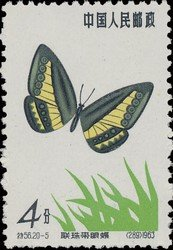 timbre: Papillon ragadia ensalda     (1)