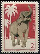 timbre: Zoo de La Havane. Éléphant