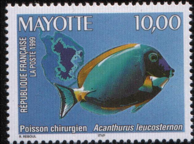 Timbre:  Poisson-chirurgien Acanthurus leucosternon