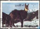 timbre: Animaux sauvages -