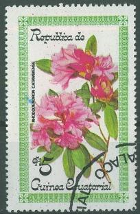 timbre: Rhododendron