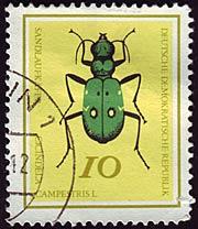 Timbre: Coléoptères - Cicindelle champêtre