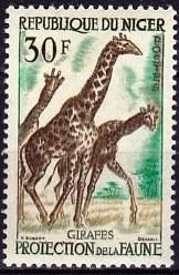 timbre: Girafes