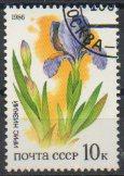 timbre: Iris