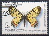 timbre: Allancastria caucasia
