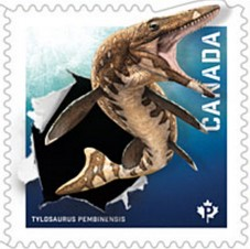 Timbre: Tylosaurus - Adh - Voir note *1*