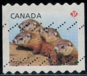 timbre: Marmottes TVP, réduit