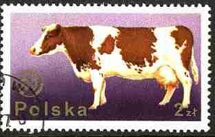 Timbre: Vache