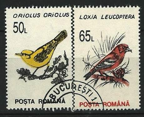 Timbre: ORIOLUS  ORIOLUS + LOXIA LEUCOPTERA