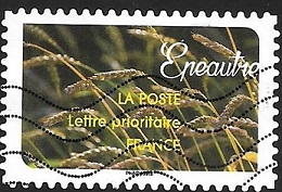 Timbre: Epeautre