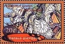 Timbre: Danaus plexippus