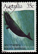 Timbre: Baleine australe
