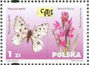 Timbre: Fleur et papillon