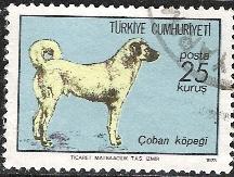Timbre: Chien-berger de Sivas