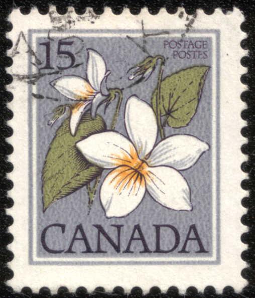 Timbre: Violette du Canada