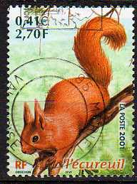 Timbre: L'écureuil