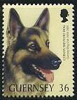 Timbre: Centenaire du club canin Berger Allemand