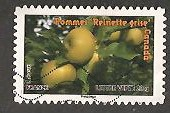 timbre: Fruits-Pommes ''Reinettes grises''-Canada