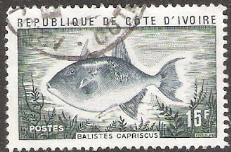 Timbre: Balistes capriscus