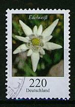 Timbre: *Edelweiss - non adhésif