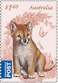 timbre: Dingo