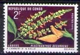timbre: Plectranthus decurrens