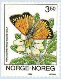 Timbre:  Papillon Colias hecla