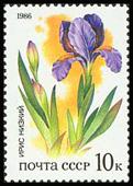 Timbre: Fleurs de la steppe. Iris
