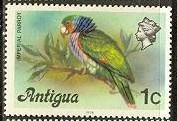 timbre: Perroquet