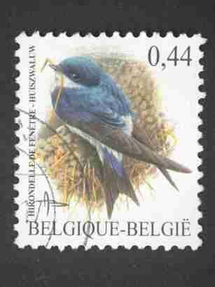 timbre:    Type Buzin - Hirondelle de fenêtre 44c