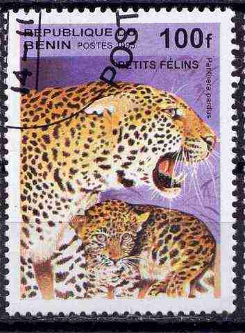 timbre: Panthera pardus