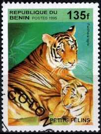 timbre: Félin : Panthera tigris