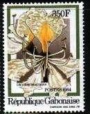 Timbre: Berlinia bracteosa - fleur