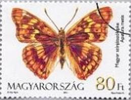 Timbre: Papillons Apatura metis