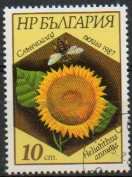 Timbre: Helianthus annuus