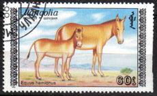 Timbre: Equus hemionus, femelle et jeune