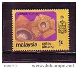 Timbre: Rafflesia hasseltii (Pulau pinang)