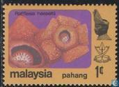 Timbre: Rafflesia hasseltii  (pahang)
