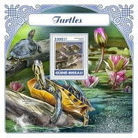Timbre: Tortues