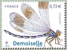 Timbre: Demoiselle
