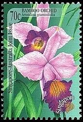 timbre: Arundina graminifolia - orchidée