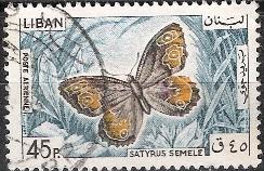Timbre: Satyrus semele
