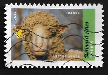 Timbre:  Mérinos d'Arles