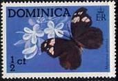 Timbre: Papillon